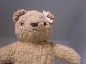 Treuer Teddy